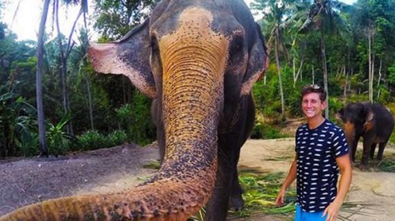 Elefantul care îşi face… selfie!