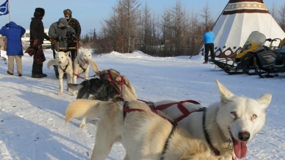 Ştiţi care este cel mai lung drum de iarnă?
