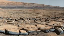 Pot creşte cartofi pe Marte?