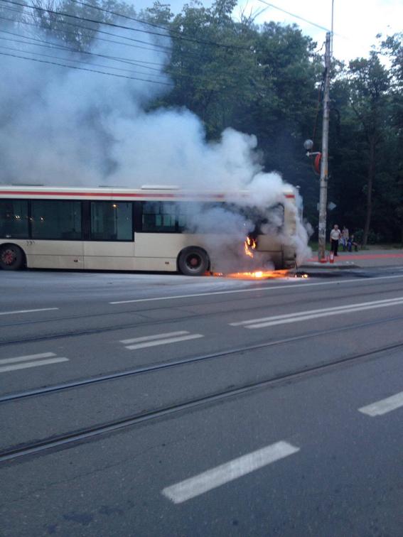 autobuz1