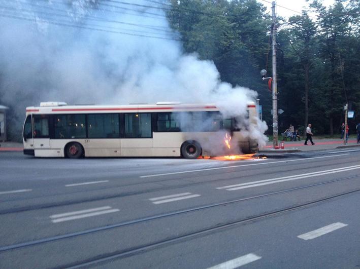 autobuz2