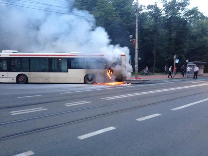 autobuz3