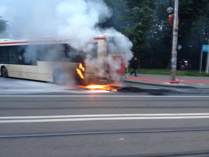 autobuz4