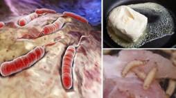 9 alimente pe care le consumaţi zilnic şi care pot cauza cancer