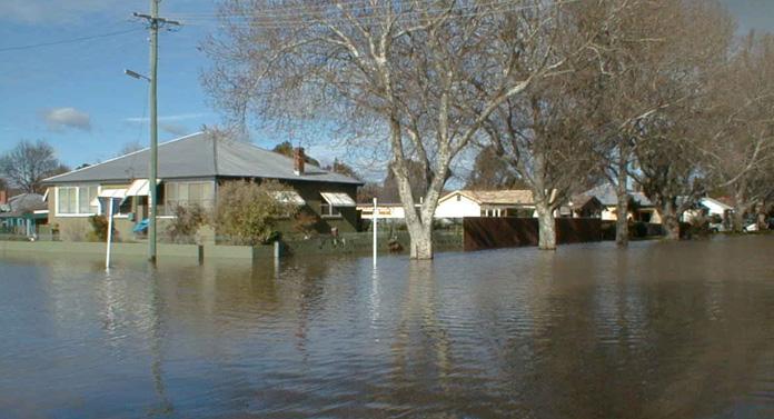 Zeci de hectare inundate în Botoşani