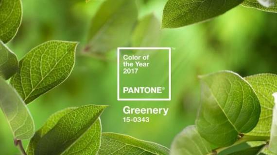 Verdele gălbui, culoarea anului 2017