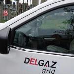 delgaz-grid