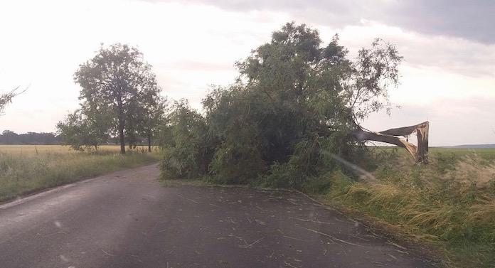 Furtuna a lăsat mii de suceveni fără curent electric