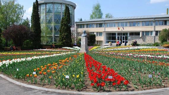 Aglomerație la Grădina Botanică