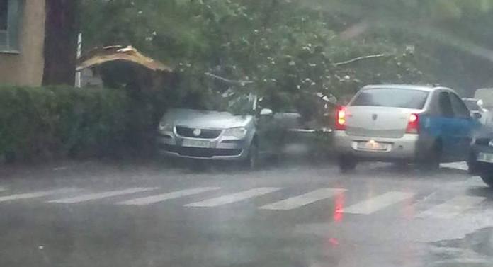 Furtuna a făcut ravagii la Iași