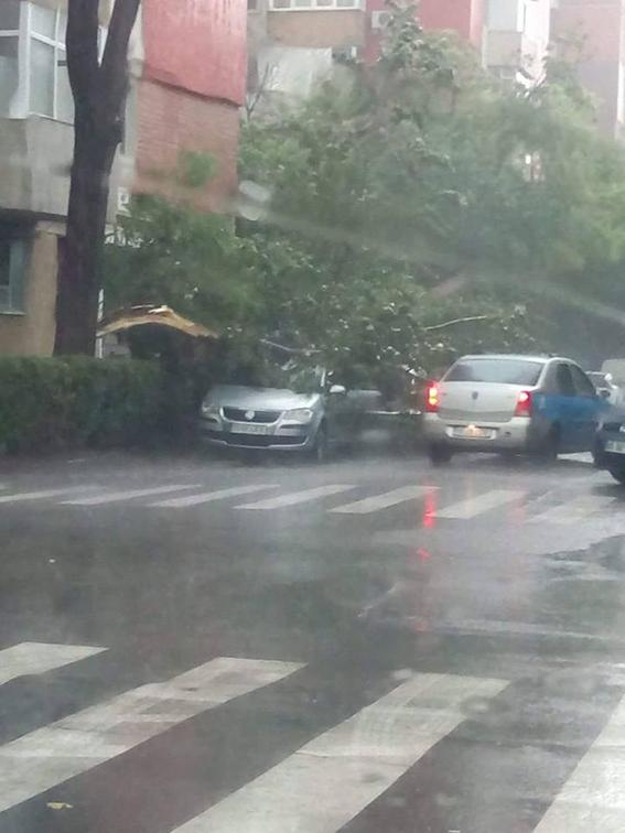 furtuna-august