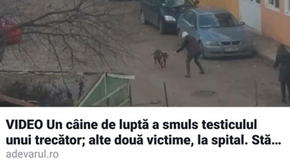 """""""Marele"""" ziarist Ionuț Benea, luat la mișto pe Facebook!"""