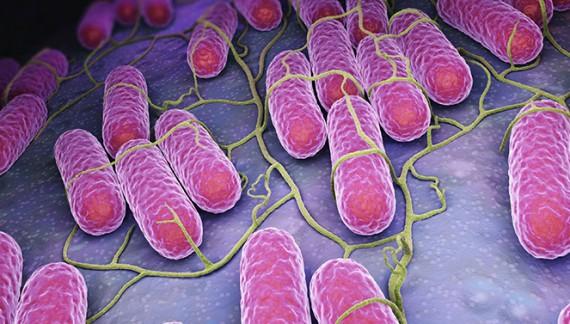 DSP confirmă: salmonella a băgat în spital cei peste 100 de ieșeni
